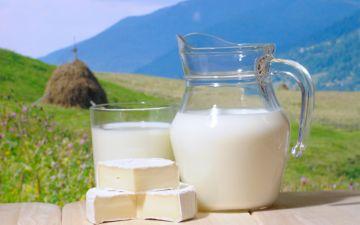 запрещенные консерванты в молоке