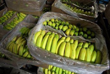 Е233 в бананах