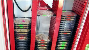 Изображение - Автомат с пиццей piccemat-iznutri