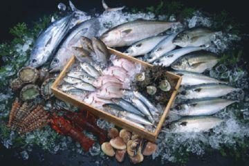 Поставки рыбы